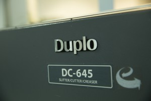 Duplo DC 645